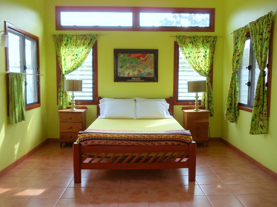 Lower Dover Field Station and Eco Jungle Lodge: Rasta Interior