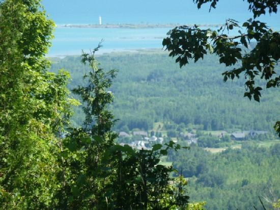 Blue Mountain Inn: view of village from scenic lookout (many trees in summer, view better in winter)