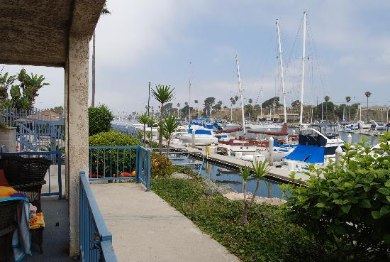 Photo of Marina del Mar Condos Oceanside