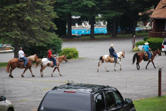 Roaring Brook Ranch & Tennis Resort: Horse riding and Outdoor pool