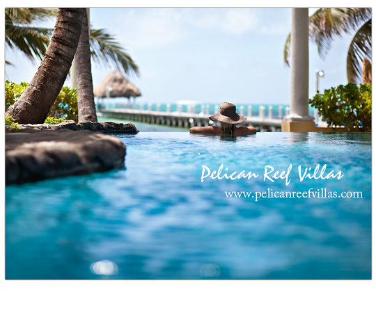 Pelican Reef Villas Resort: A day in paradise!