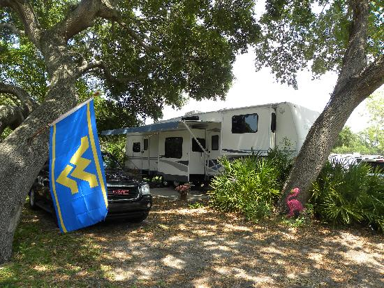KOA St Petersburg / Madeira Beach: Great spot by the water...DW19