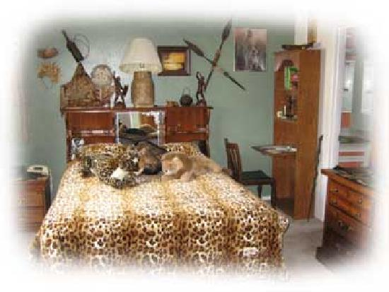 Alaskan European Bed & Breakfast: Africa Room