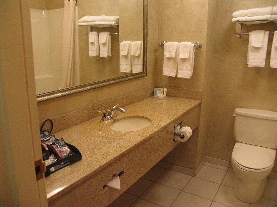 Comfort Inn Great Barrington: Bathroom