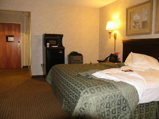 Comfort Inn Great Barrington: Room