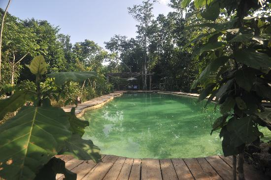 Jolie Jungle: piscina natural