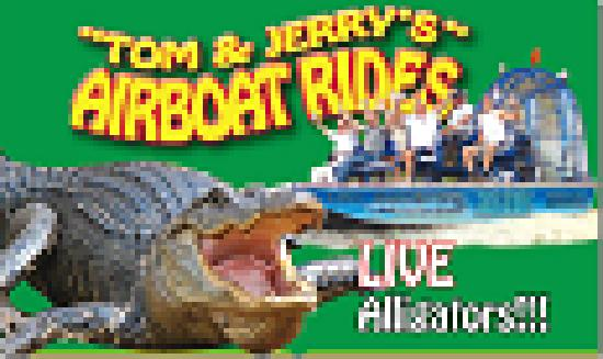Fun For All 321 689 8918 Picture Of Big Toho Airboat Tours Kissimmee Tripadvisor