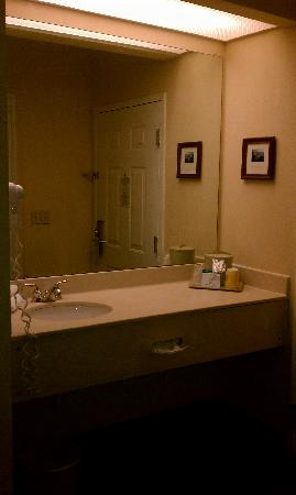 Quality Inn Kingsport : Bathroom