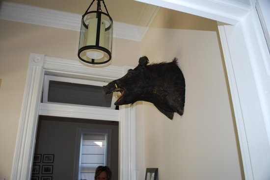 The Laughing Boar Guest House: Mascot inside front entrance
