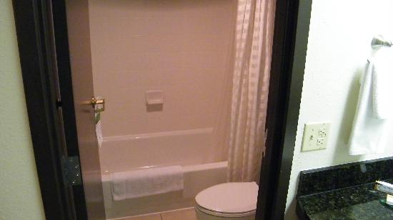 Hyatt Place Tucson Airport: clean shower