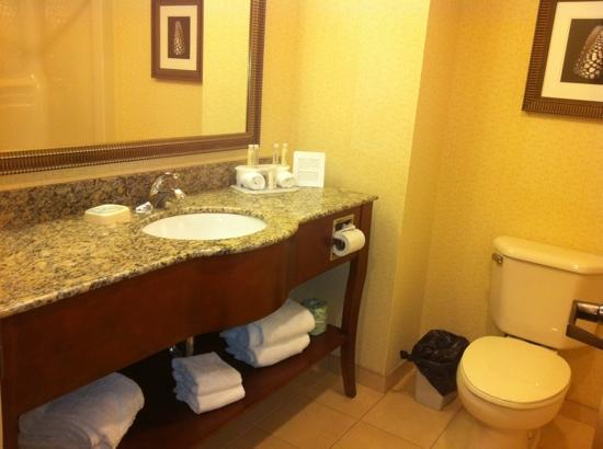 Holiday Inn Express Rehoboth Beach: Bathroom