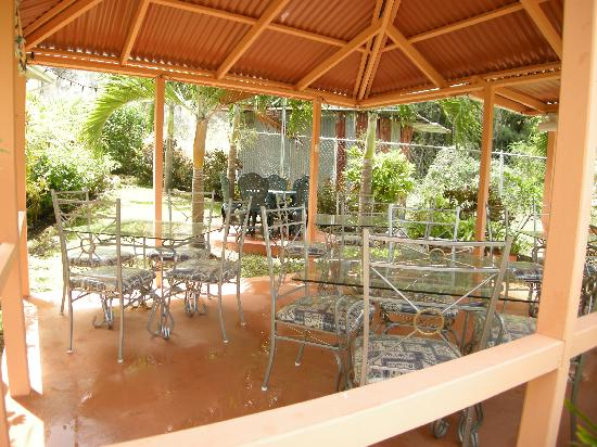 Palm Paradise Guest House + 2 Apartments: Wine Dine or Relax