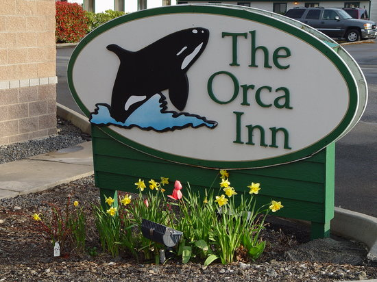 The Orca Inn
