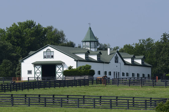 The Top 10 Things to Do Near Kentucky Horse Park