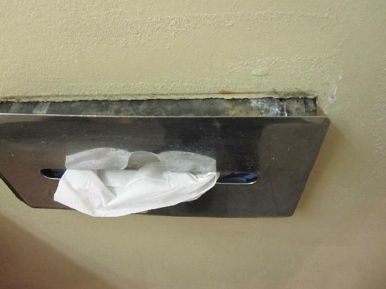 Hotel Morgantown and Conference Center: Tissue dispenser comes out of wall