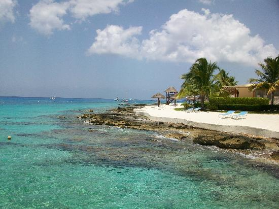 Presidente Inter-Continental Cozumel Resort & Spa: pier photo