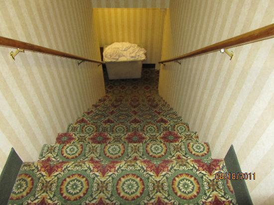 Holiday Inn University-Blacksburg: THE STAIRS THAT YOU HAVE TO CLIMB!!