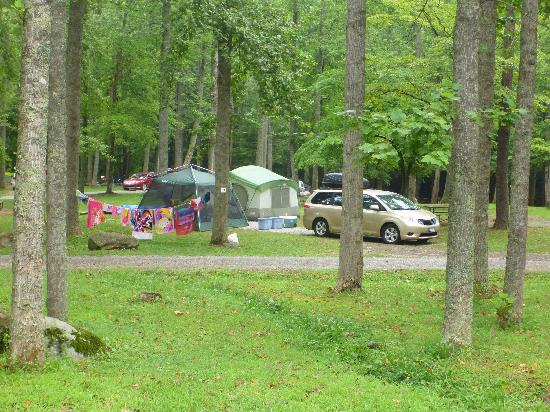 Adventure Bound Camping Resort - Gatlinburg