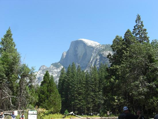Yosemite Ridge Resort : Half Dome from the Valley floor
