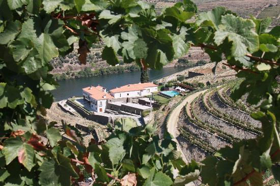 Quinta do Pego: Looking down on Hotel from high in vineyards
