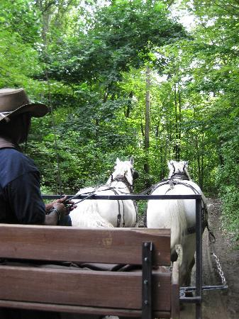 Highland, État de New York : horse drawn wagon ride