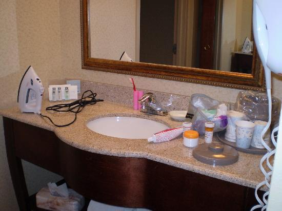 Hampton Inn and Suites Valley Forge/Oaks: Roomy bathroom