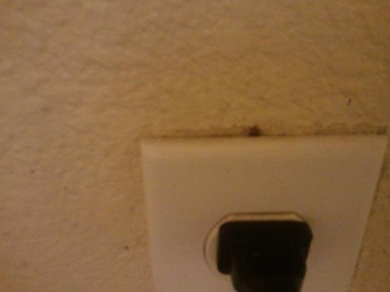 Room photo 2 from hotel Motel 6 Pensacola North