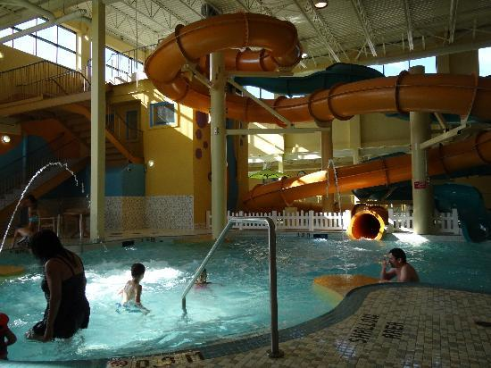 Family suite picture of best western plus port o 39 call for Best pool buys canada