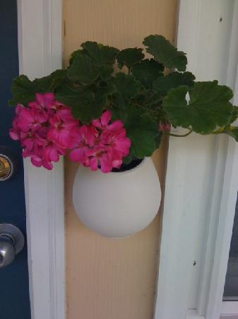 Briarcliff Motel: Sweet flower pot