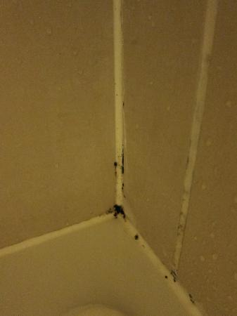 Black Mold In Bathroom Of De Vere University Arms Cambridge Picture Of University Arms Hotel