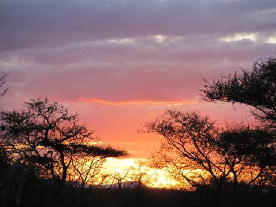 Tremisana Game Lodge: Sunset over the Bush