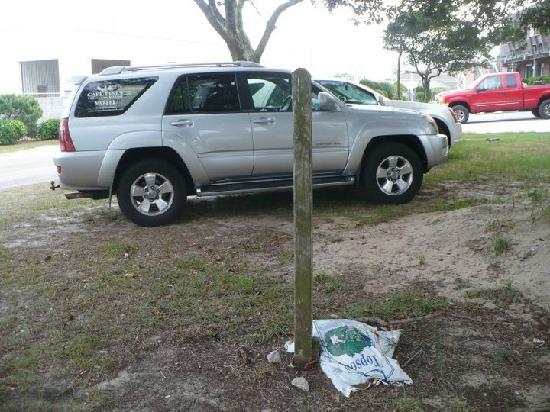 Cape Pines Motel: road side landscaping, parking lot