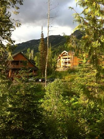 Copper Horse Lodge: view from side window