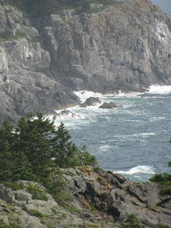 the cliffs of Monhegan Island