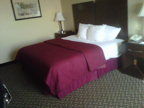 Comfort Inn Waynesboro: Bed in Comfort Inn #203