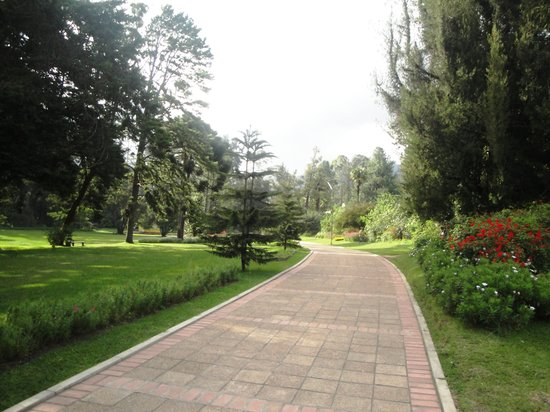 Victoria Park of Nuwara Eliya: A neat section of the park.