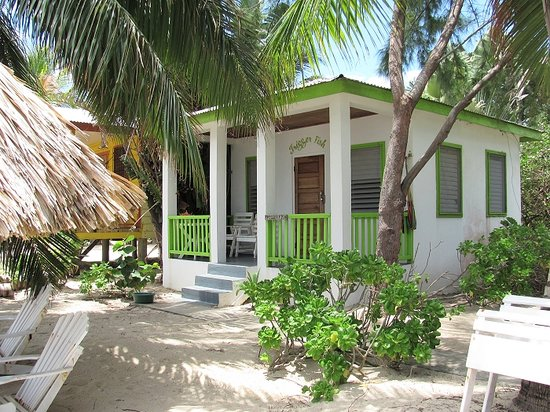 Trigger Fish cabin at Ranguana Lodge