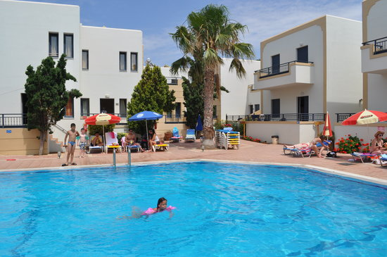 Blue Aegean Apartotel: pool and palm tree