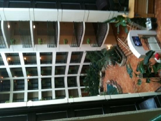 Embassy Suites Hotel Chicago - Schaumburg / Woodfield: Looking out from room