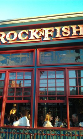 Rockfish on Rock N Fish