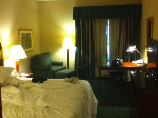 Hilton Garden Inn Hershey: king bed room