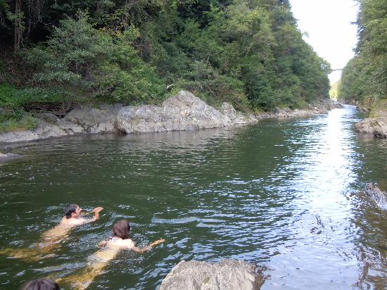 Taftsville, เวอร์มอนต์: Swimming in nearby Quechee Gorge