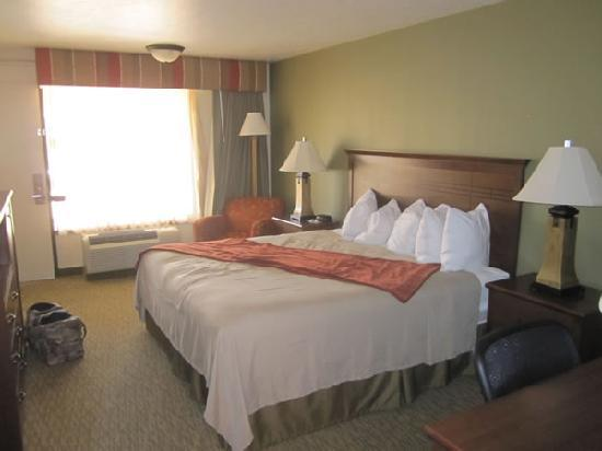 BEST WESTERN PLUS Town & Country Inn: The Room