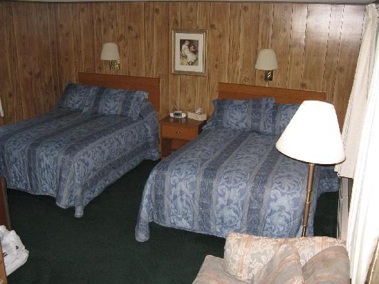 Twin City Motel: Double Bedded Room - Standard Motel Room in Facility