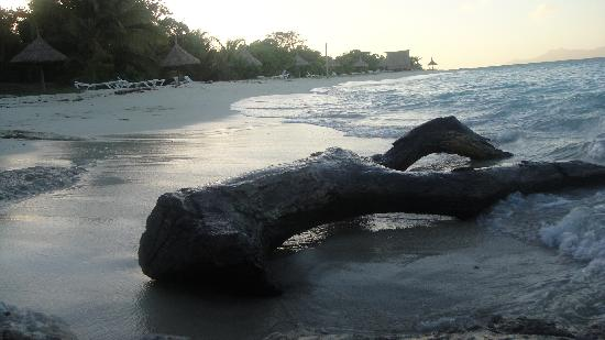 Wyspy Yasawa, Fidżi: The Beach Dawn