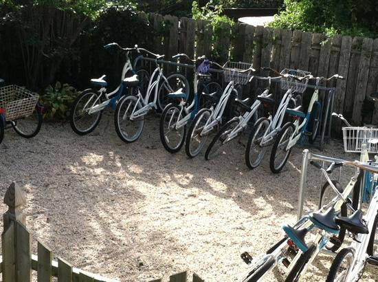 Victoria Guest House: Beach cursing bikes to use.