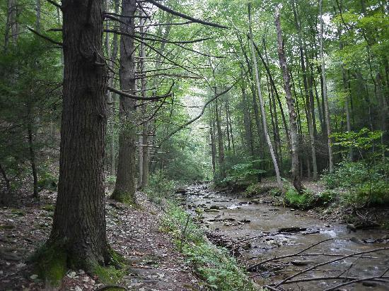 Lancaster County, PA: Tucquan Glen Nature Conservancy