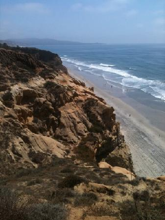 Torrey Pines Property Management on Torrey Pines Hike And Beach Is Wonderful
