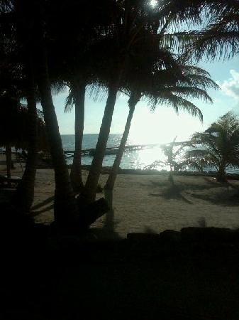 Xanadu Island Resort Belize: The view from the porch of room 10