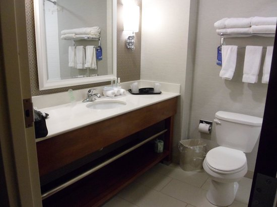 Holiday Inn Express & Suites Terre Haute: Bathroom